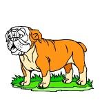 Раскраска Породы собак