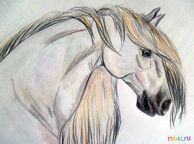 ... - фестиваль. Детский рисунок / лошадь: rebzi.ru/festival/8511