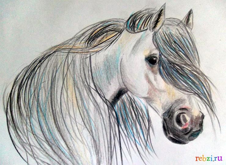 ... - фестиваль. Детский рисунок / лошадь: rebzi.ru/festival/8512/?page=5