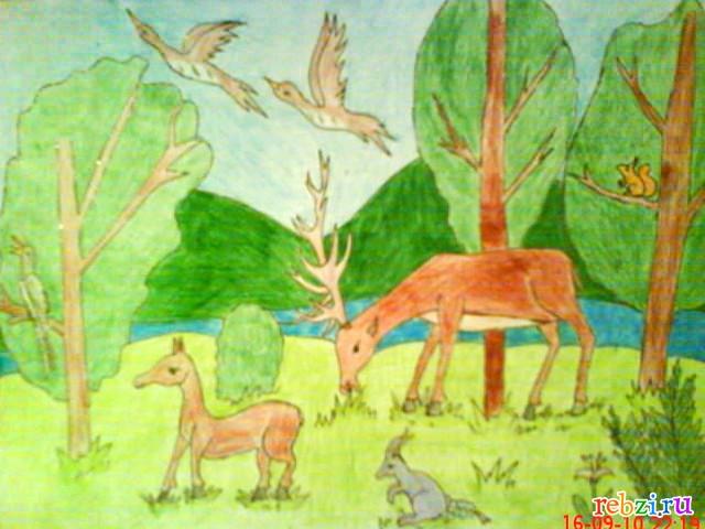 рисунки только о казахстане