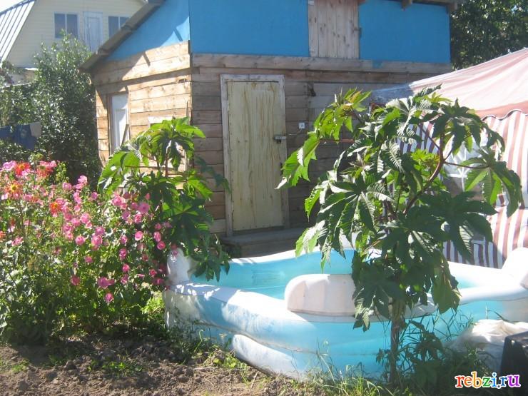 Фото ребзиков мой дом моя дача летом
